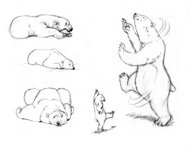 Rough Sketches of Polarity Bear #3